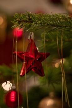 Buon Natale proprio a TUTTI