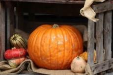 Mica sottostimi il valore di Halloween?