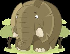 L'elefante ti passa davanti al naso?