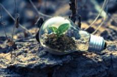 Vuoi crescere? Sii sostenibile